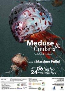 Meduse e Cnidaria - locandina mostra Museo storia naturale di Ferrara 6 luglio-24 settembre 2017